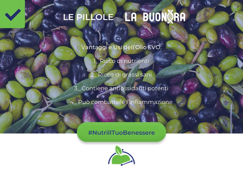 Vantaggi e Usi dell'Olio EVO (extra vergine di oliva) spremuto a freddo